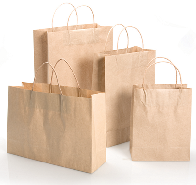 "Paper Carry Bags |  W-12"" x H-17""x D-5"" Image"