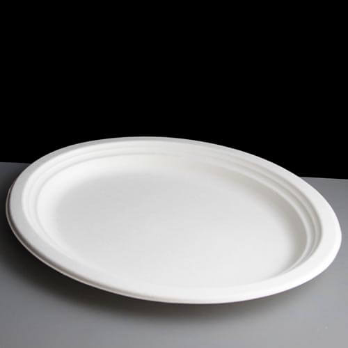Bagasse Round Plate | 10 Inch Image