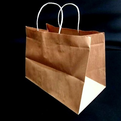 Brown Paper Bag With Handle | W-23 cm x H-18 cm x G-15 cm | 0.5 KG Image