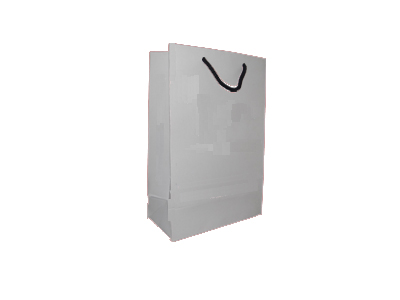 "Paper Bag With Handle | With Logo | H - 9"" X L - 6"" X G - 3"" Image"