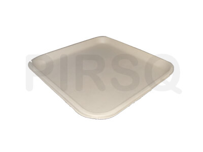 Bagasse Square Plate 10 INCH Image