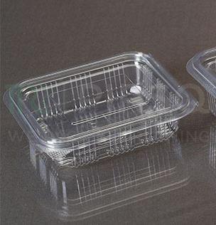 Hinged Container With Lid | Oracle | 250 ML Image